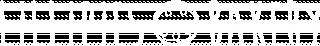 logo-lillipies-white